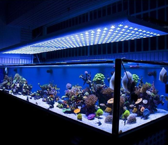 LED-Aquarium-Light-index-2